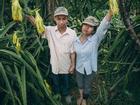 Cô dâu, chú rể hóa nông dân chụp ảnh cưới gây 'bão' cộng đồng mạng