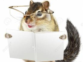 Nhật ký phiêu lưu ký: Chuột đến trường
