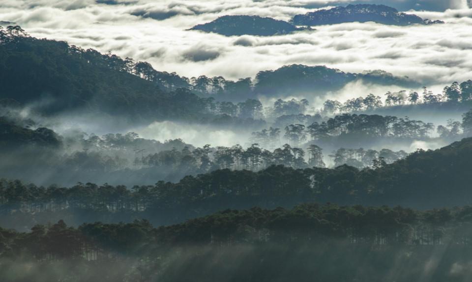Những khoảnh khắc thiên nhiên tuyệt diệu trên Tổ quốc Việt Nam-3