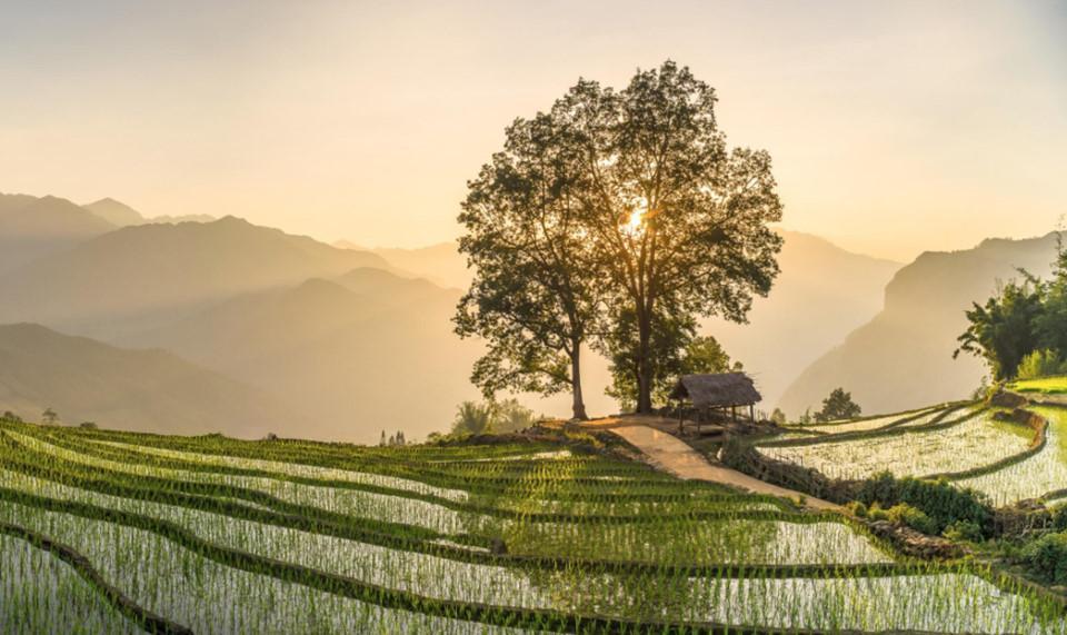 Những khoảnh khắc thiên nhiên tuyệt diệu trên Tổ quốc Việt Nam-4