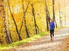 Mùa thu tới rồi, 7 lý do sau đây sẽ 'ủn' bạn quen dần thói quen chạy bộ