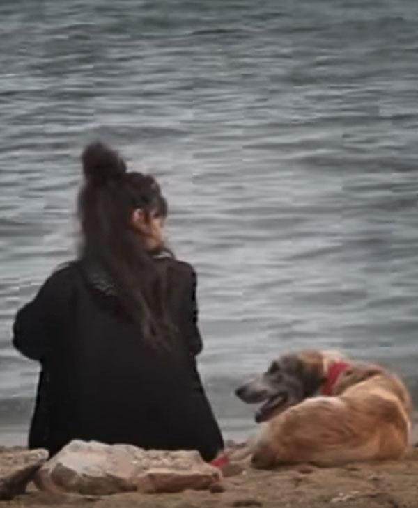 cute-homeless-dog-with-woman.jpg