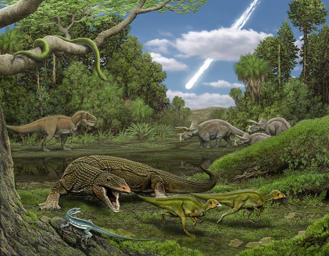 Phát hiện gây sốc: Có một loài cây từ thời khủng long vẫn sống tốt trên trái đất-2