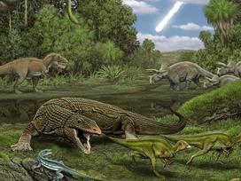 Phát hiện gây sốc: Có một loài cây từ thời khủng long vẫn sống tốt trên trái đất