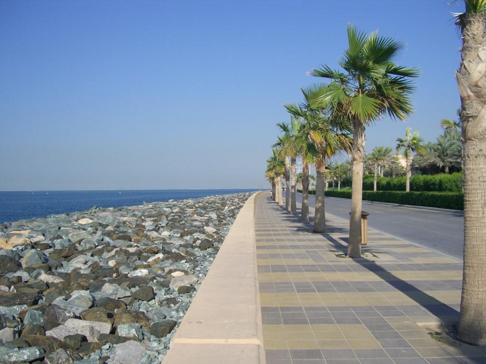 Công cuộc lấn biển xây đảo khổng lồ của Dubai-8