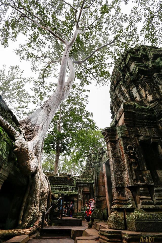 Điểm đến 2/9: Khám phá Campuchia - đất nước của những ngôi đền-4