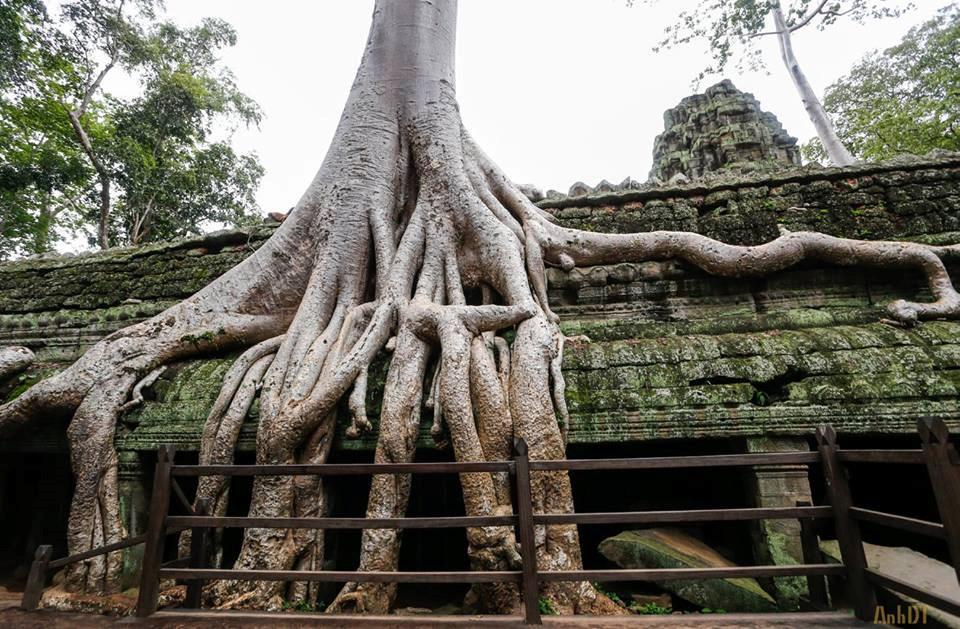 Điểm đến 2/9: Khám phá Campuchia - đất nước của những ngôi đền-5