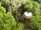 Cắm trại trên những ngọn cây