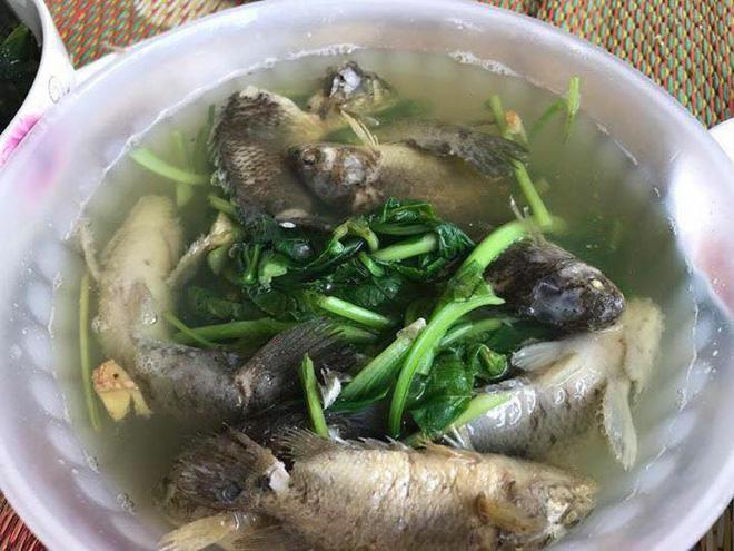 Chồng thèm ăn canh cá rô nấu rau cải, vợ tức tốc nấu như này, bạn có dám ăn không?-2