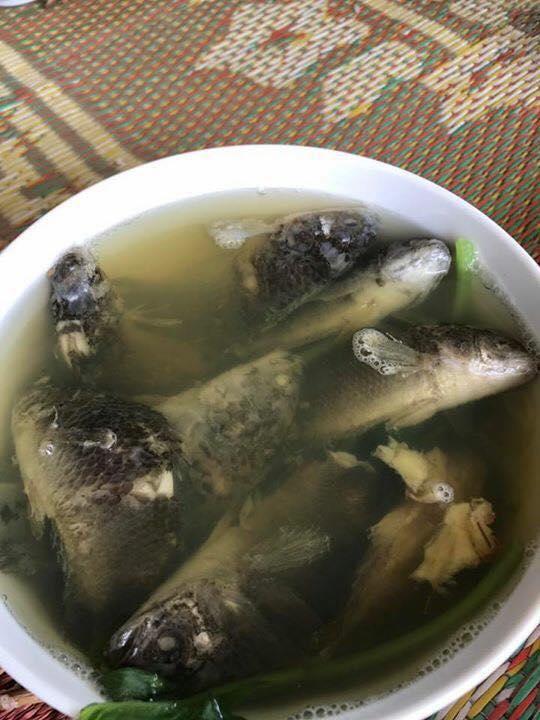 Chồng thèm ăn canh cá rô nấu rau cải, vợ tức tốc nấu như này, bạn có dám ăn không?-3