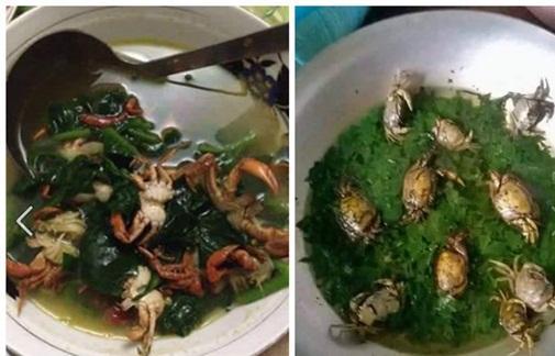 Chồng thèm ăn canh cá rô nấu rau cải, vợ tức tốc nấu như này, bạn có dám ăn không?-7