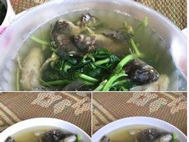 Chồng thèm ăn canh cá rô nấu rau cải, vợ tức tốc nấu như này, bạn có dám ăn không?