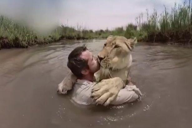 Sư tử trên bờ vồ người đàn ông giữa sông và diễn biến không ngờ-1