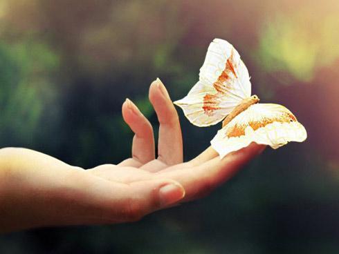 Những điềm lành báo chuyện vui, tài lộc và tiền bạc ùn ùn kéo đến với bạn và gia đình