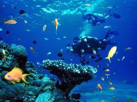 Điểm đến 2/9: Đảo Campuchia giá rẻ đẹp không kém Maldives