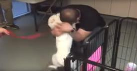 This Dog Was Missing For 22 Days. When He Reunites With His Human? The Embrace Says It All.