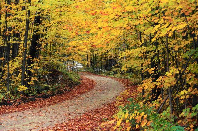 Những địa điểm chỉ nên tới vào mùa thu-6