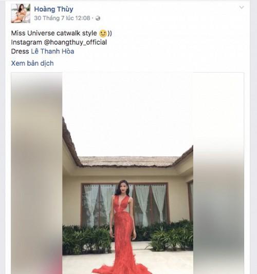 Hoàng Thùy: Tôi sẽ không thi Hoa hậu Hoàn Vũ Việt Nam-4