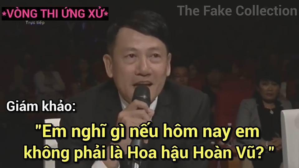 Ảnh chế Hoàng Thùy thi Hoa hậu Hoàn vũ Việt Nam mặc váy hoa dâm bụt và ứng xử bằng ca dao-6