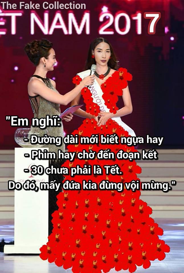 Ảnh chế Hoàng Thùy thi Hoa hậu Hoàn vũ Việt Nam mặc váy hoa dâm bụt và ứng xử bằng ca dao-7