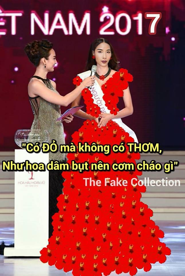 Ảnh chế Hoàng Thùy thi Hoa hậu Hoàn vũ Việt Nam mặc váy hoa dâm bụt và ứng xử bằng ca dao-13