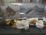 Bí ẩn xác ướp công chúa 2.500 năm tuổi mang hình xăm, biết trả thù