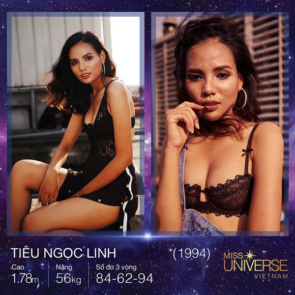 Hoa hậu Hoàn vũ Việt Nam 2017 bị bao vây bởi dàn ngôi sao Vietnams Next Top Model-2