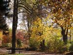 Công viên khỏa thân đầu tiên ở Paris có gì thú vị?