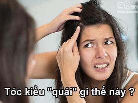 Quizz: Mái tóc tiết lộ những bí mật gì về bạn?