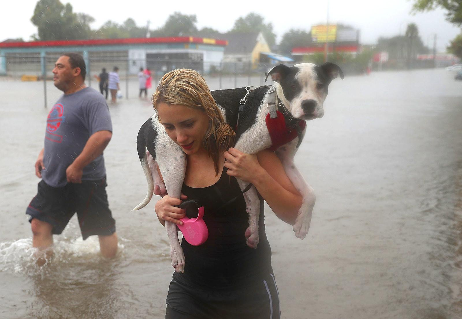 Naomi Coto carries Simba on her shoulders as they evacuate their home after the area was inundated with floodwater from Tropical Storm Harvey on Aug. 27 in Houston.