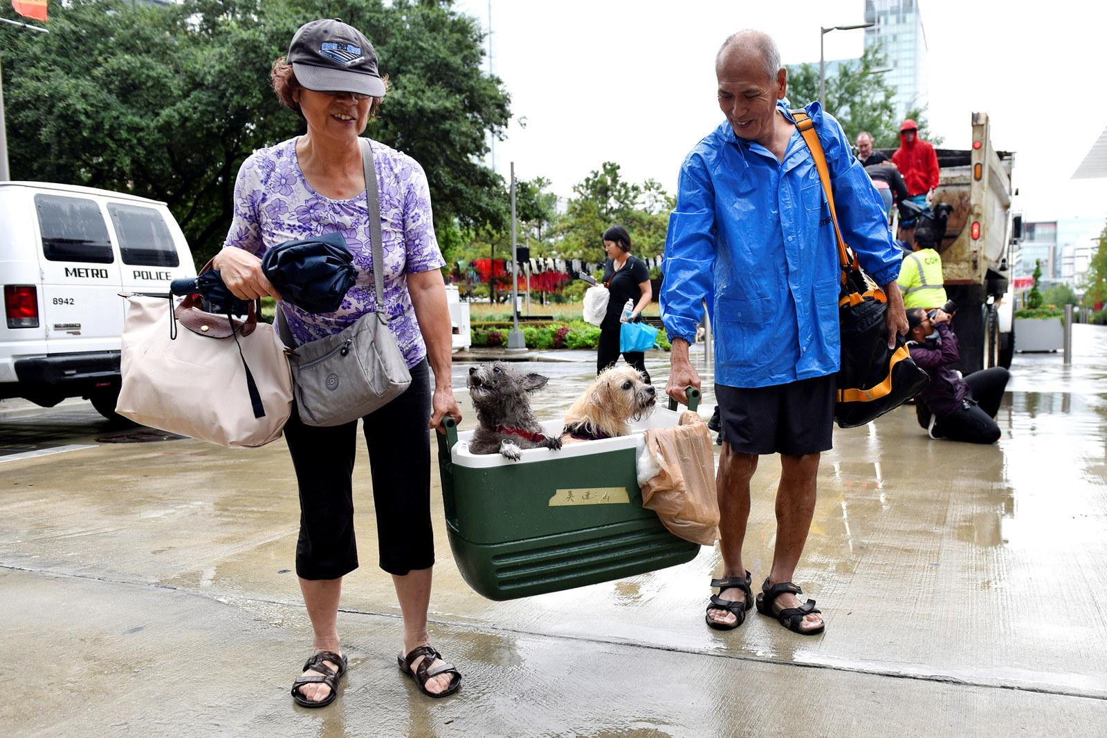 A couple of evacuees carry their dogs into the the George R. Brown Convention Center in Houston on Aug. 27.