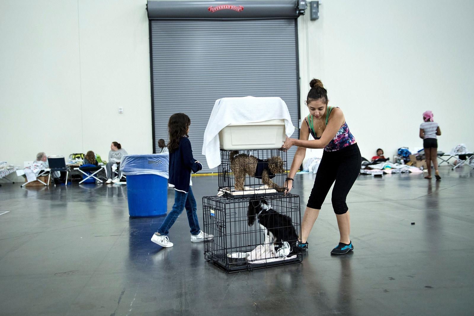 Flood victims move crates with pets at a shelter in the George R. Brown Convention Center in Houston on Aug. 28.