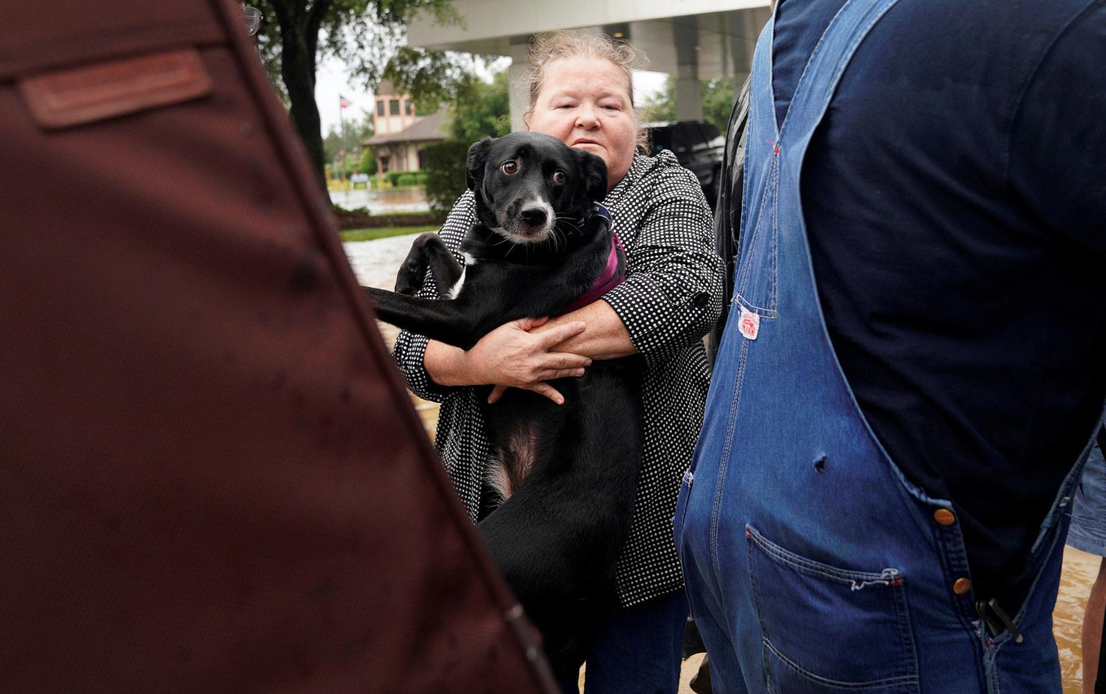A woman carries her dog into a collector's vintage military truck to evacuate from flood waters in Dickinson, Texas, on Aug. 27.