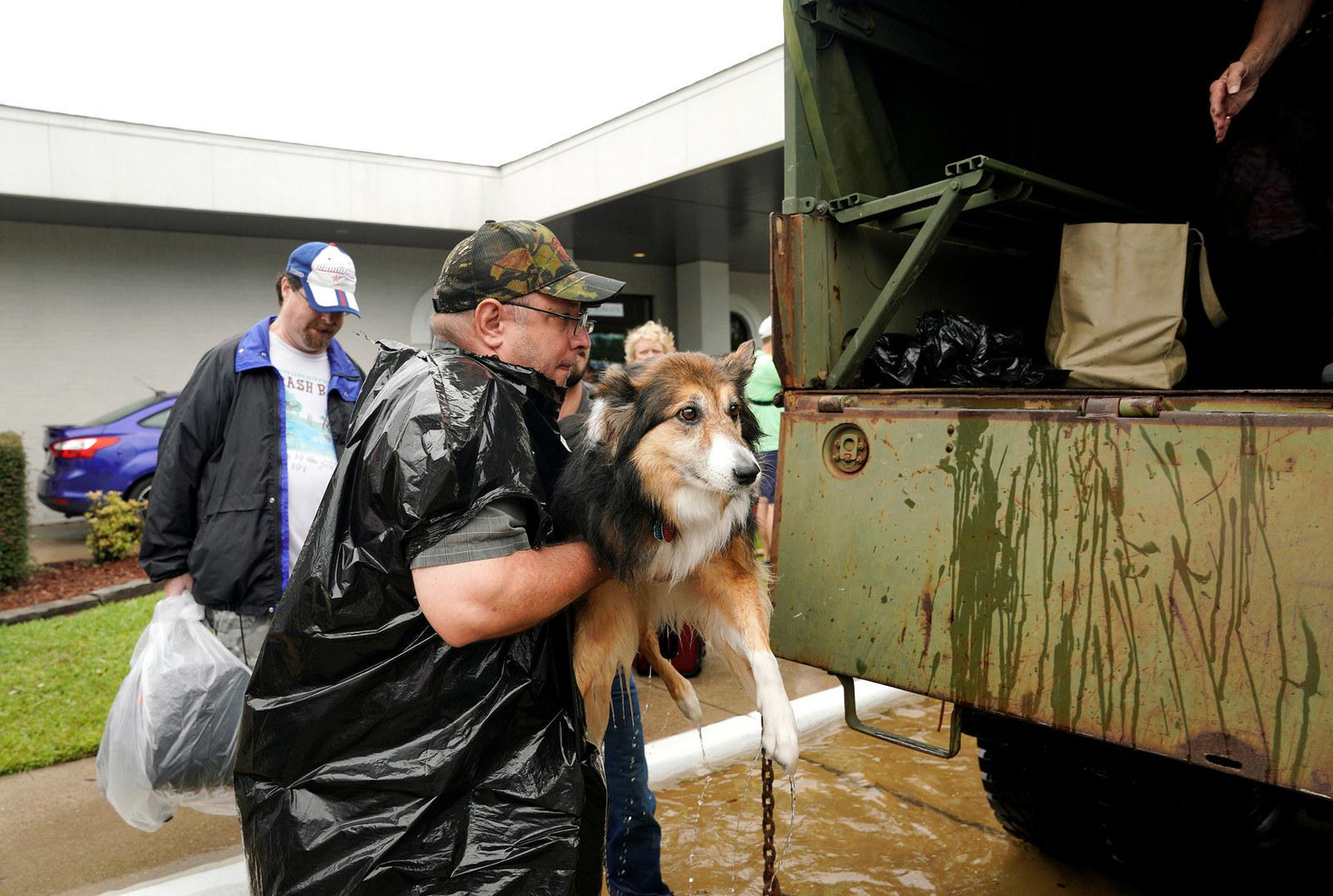 Volunteers load pets into a collector's vintage military truck to evacuate them from flood waters in Dickinson, Texas, on Aug. 27.