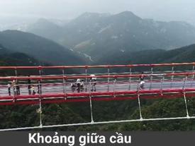 Cầu treo bộ hành đáy kính dài nhất thế giới ở Trung Quốc
