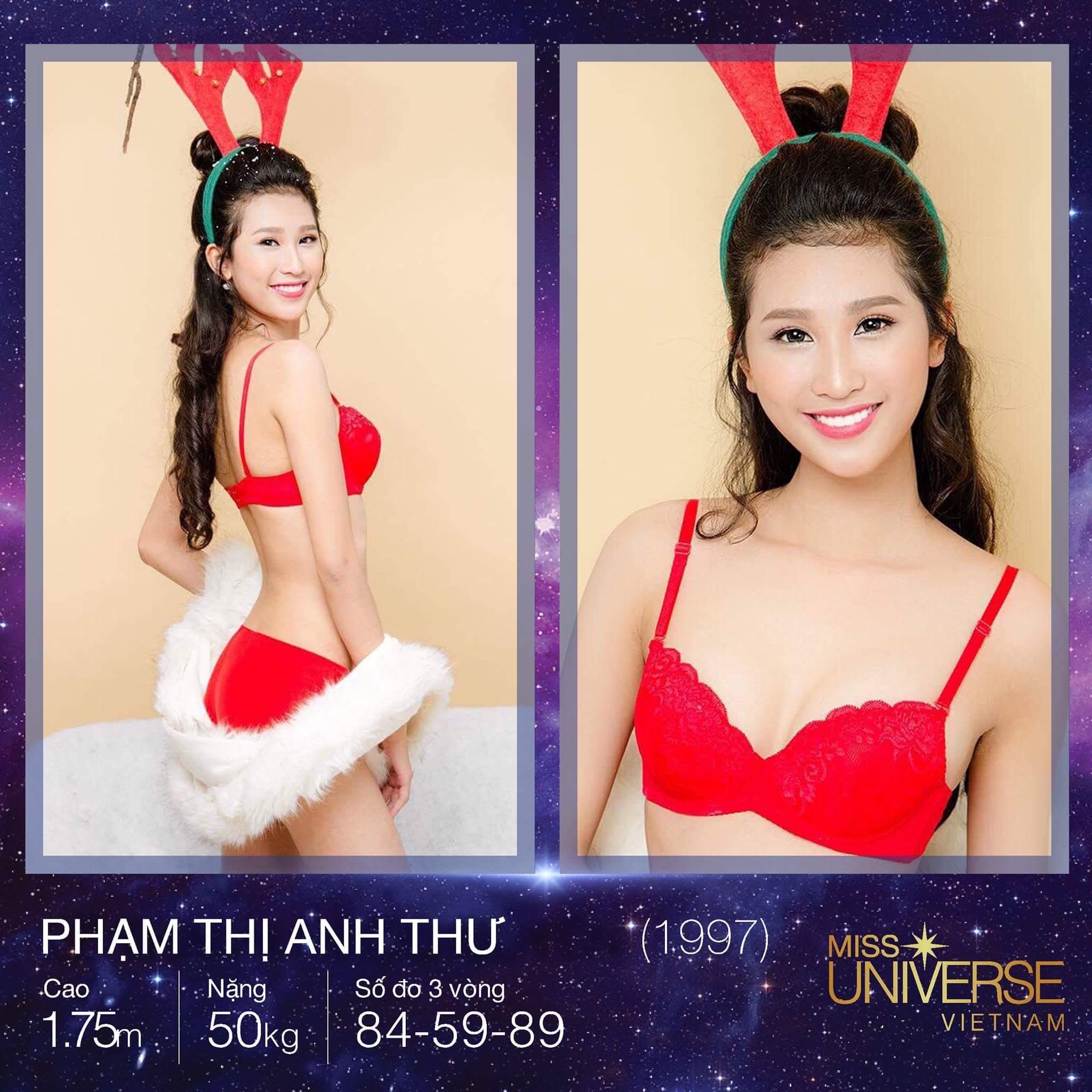 Hoa hậu Hoàn vũ Việt Nam 2017: Cuộc chiến của những đại mỹ nhân-10