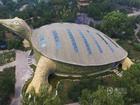 Lạ đời tòa nhà hình con rùa khổng lồ mà nhìn xa cứ ngỡ 'cụ rùa' lên bờ