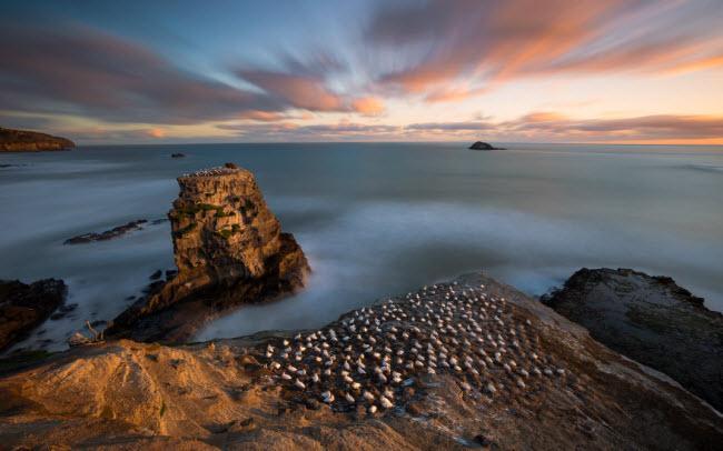 Mê hoặc trước những địa danh đẹp như thiên đường ở New Zealand-10