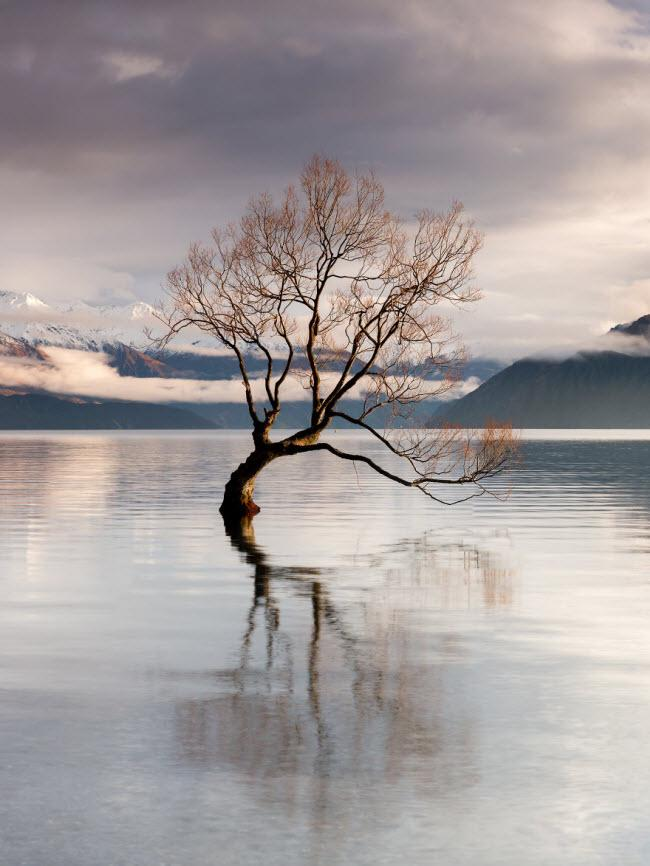 Mê hoặc trước những địa danh đẹp như thiên đường ở New Zealand-12
