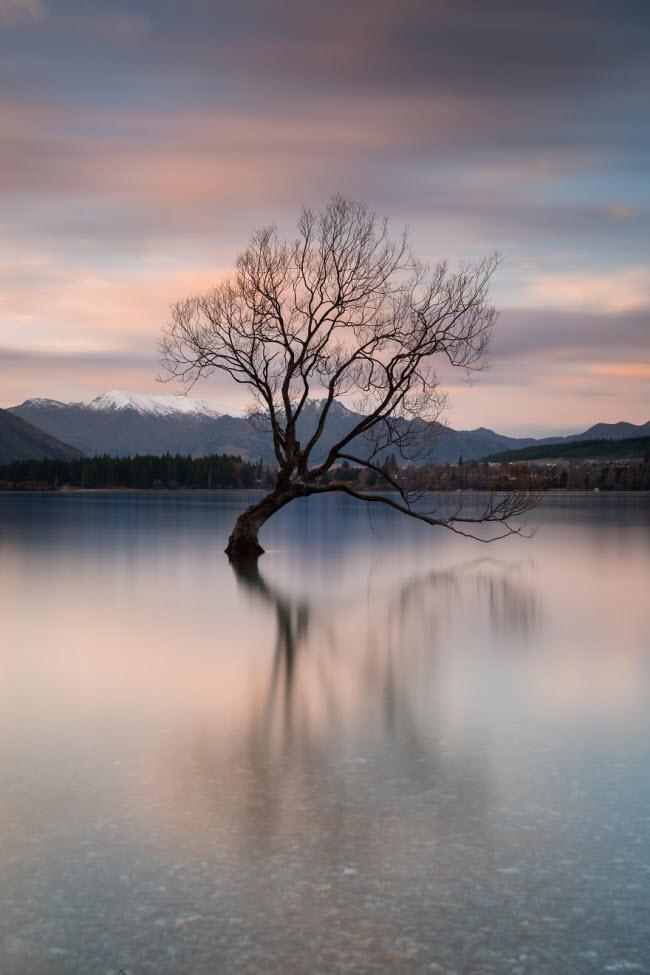 Mê hoặc trước những địa danh đẹp như thiên đường ở New Zealand-4