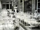 Hãi hùng hàng trăm hài cốt trẻ em được tìm thấy trong hố chôn tập thể ở Scotland