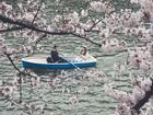 Tokyo bình dị và gần gũi qua loạt ảnh đường phố chân thực