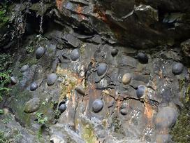 Kỳ lạ: Vách đá 30 năm lại 'đẻ trứng' một lần