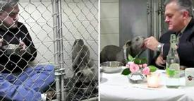 Remember The Vet Who Sat Inside A Kennel So A Dog Would Eat? See Them One Year Later!