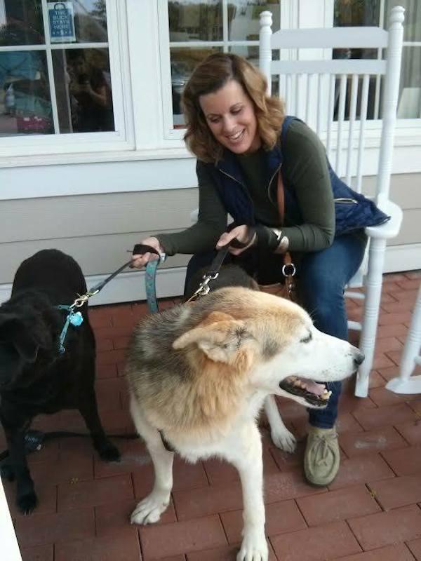 surrendered dog