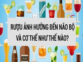 Rượu tác động đến não bộ và cơ thể như thế nào?