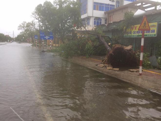 Bão số 10 quét qua, nhiều tỉnh thành ở Việt Nam thất thủ-1