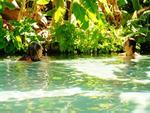 Bể bơi tự nhiên bí mật ở Brazil