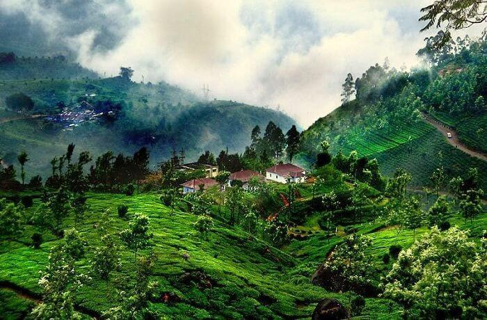 Những điểm đến lý tưởng để trải nghiệm mùa thu Ấn Độ-3