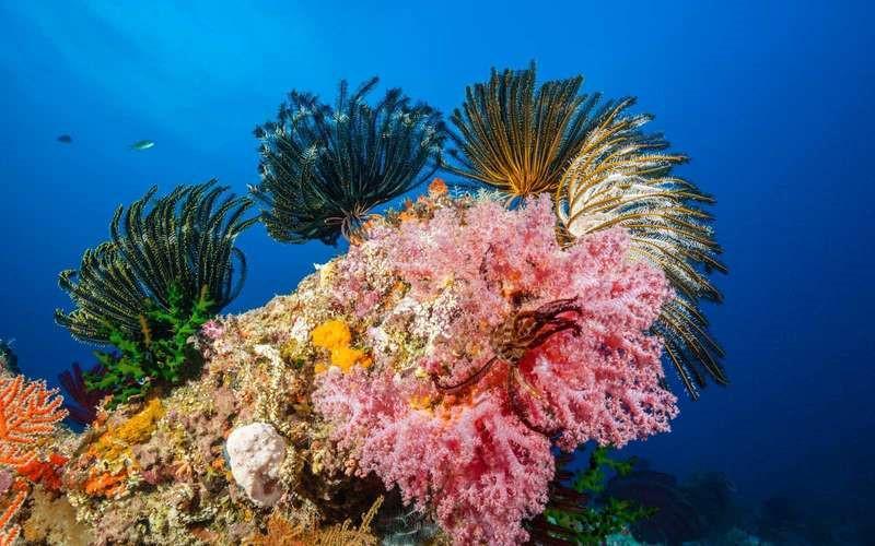 Những điểm du lịch rực rỡ sắc màu tự nhiên-6